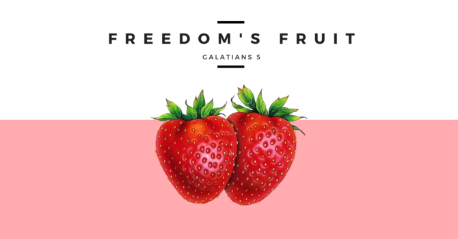 Freedom's Fruit- July 5