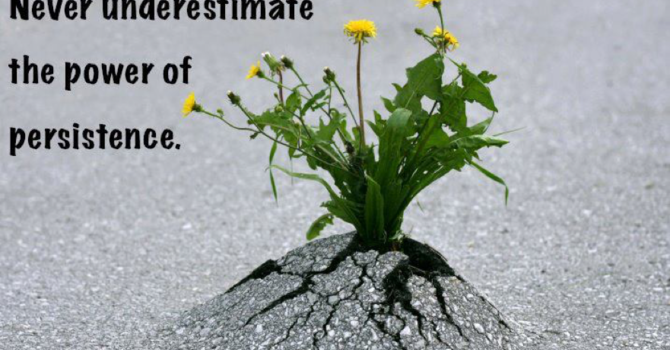 Persistence image