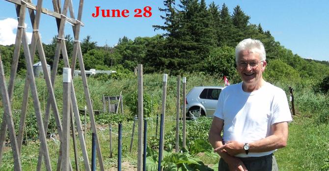 Summer photos from around the parish image