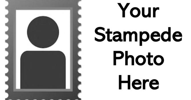 Stampede Photo Gallery
