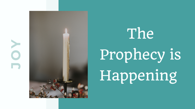 The Prophecy is Happening (Joy)