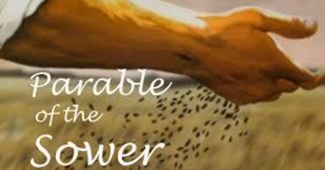 Scattering Seeds - The Parable of the Sower