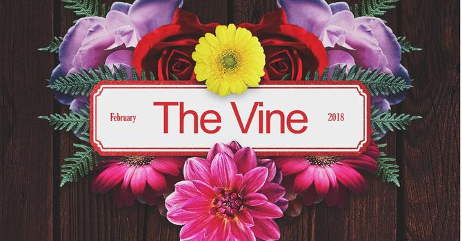 The Vine - February 2018 image