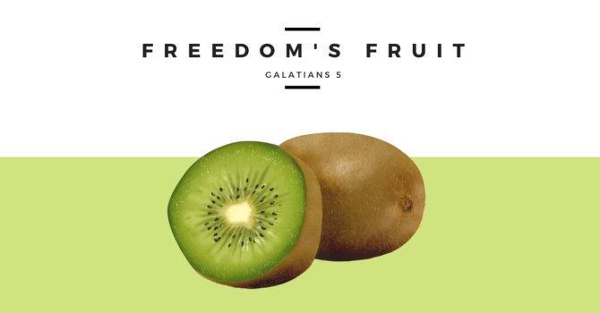 Freedom's Fruit - July 19