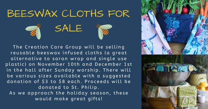 BEESWAX CLOTHES