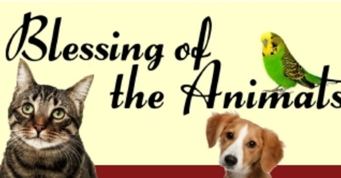 Blessing of the Animals Service - Cancelled