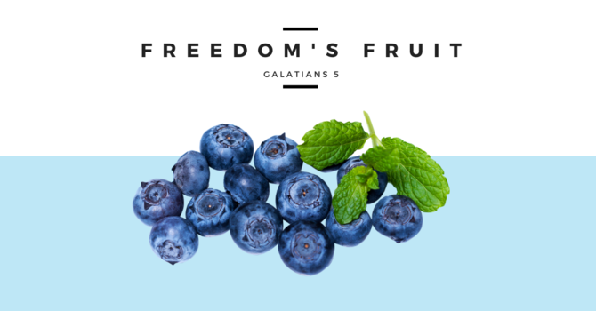 Freedom's Fruit - July 26