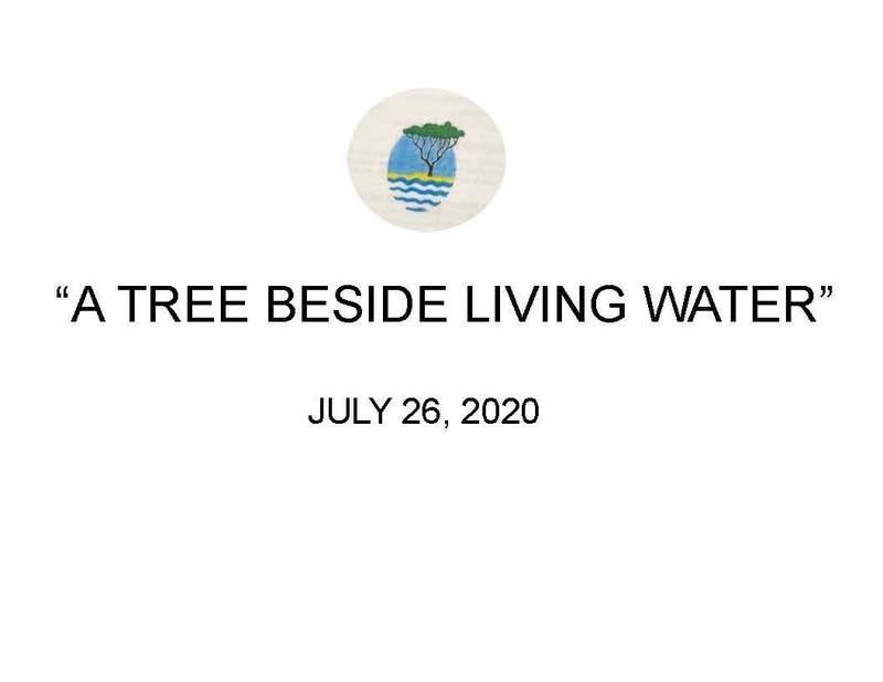 """A TREE BESIDE LIVING WATER"""