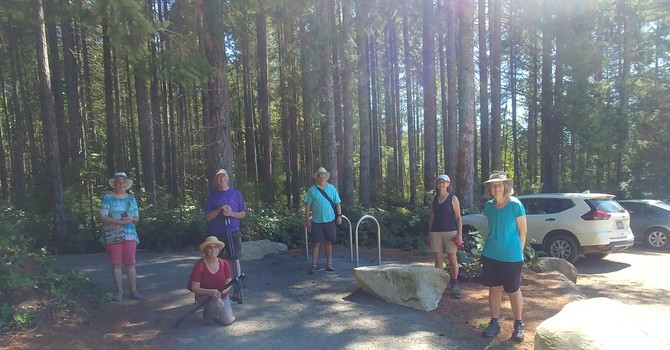 Sunday Walking Group image