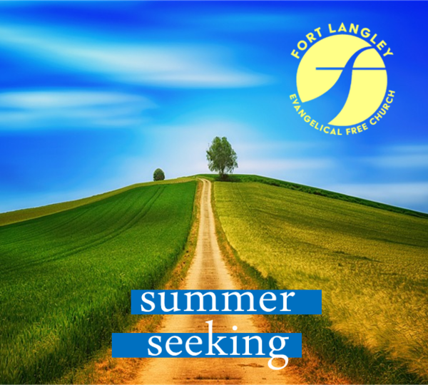 SUMMER SEEKING