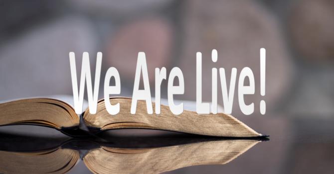 Live Stream!!!! image