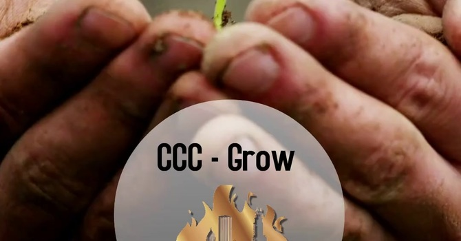 2. Grow