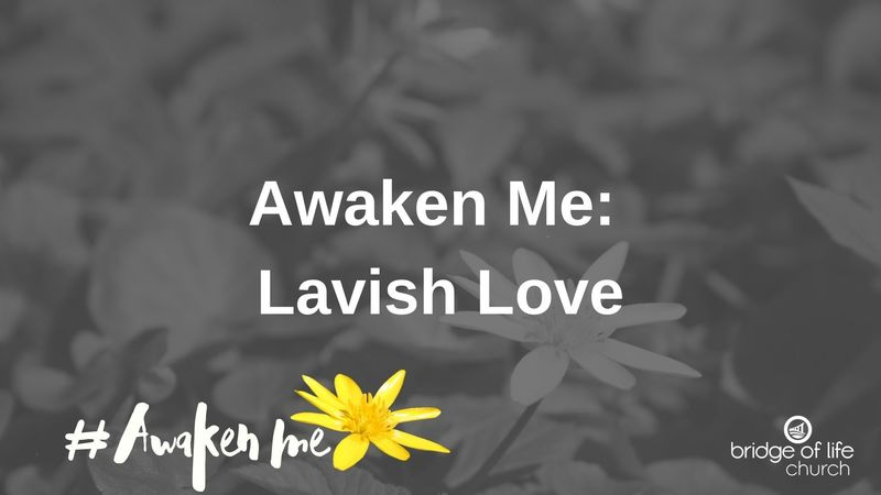 Awaken Me: Lavish Love