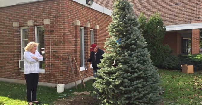 New Neighbourhood  Christmas Tree image