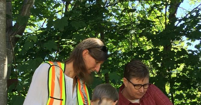 Salal + Cedar brings new life to creek image