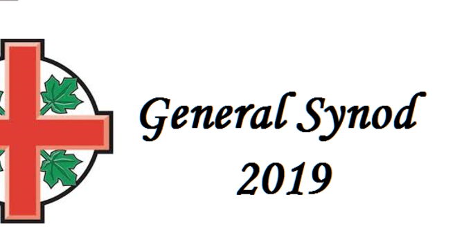Diocesan representatives issue statement from General Synod 2019   image