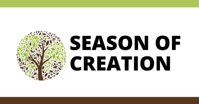Season of Creation 2020
