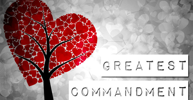 Homily on Remembrance Sunday image
