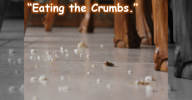 Eating the Crumbs.