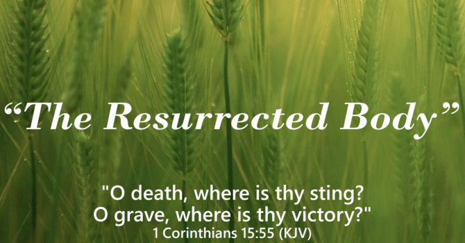 The Resurrected Body