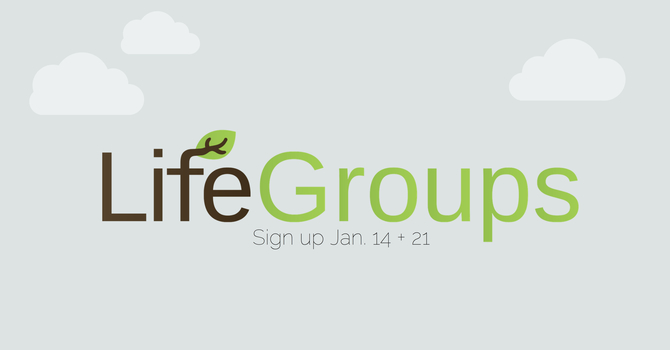 Life Groups are Starting! image