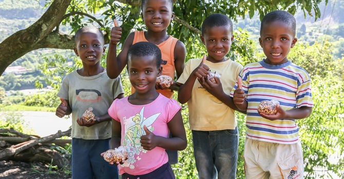 Soup and Apple snacks to Swaziland image