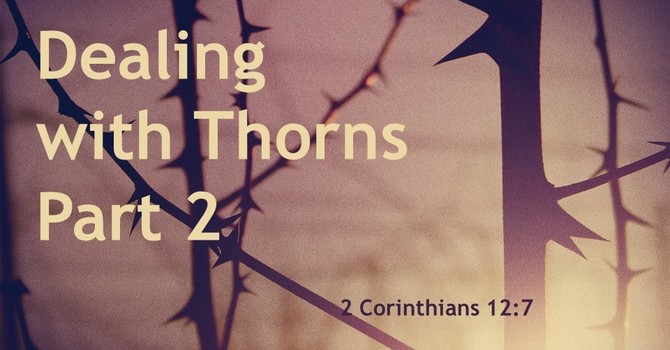 Dealing with Thorns ~ Part 2
