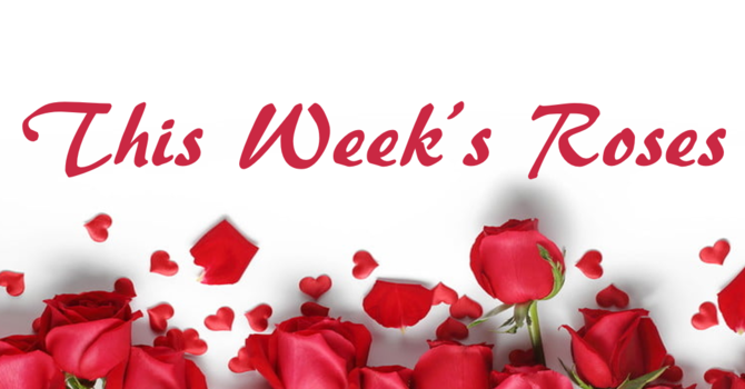 This Week's Roses image