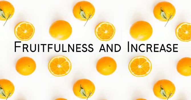 """Fruitfulness & Increase"""