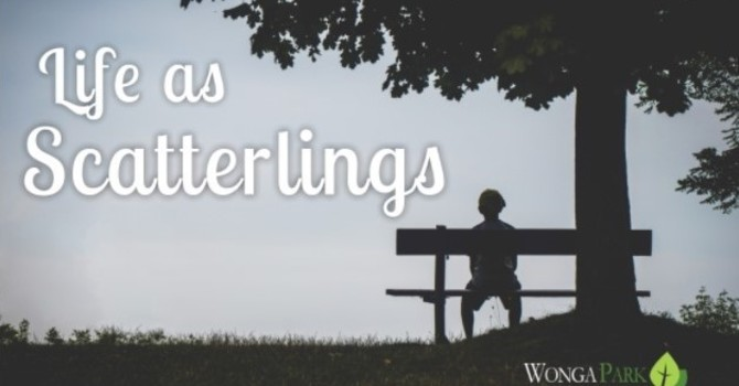 Scatterlings Know How to Handle Suffering