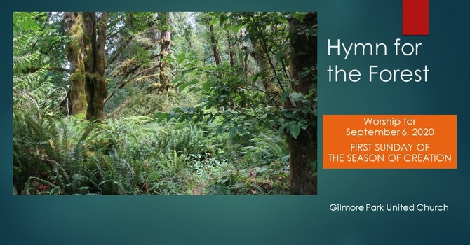 A HYMN TO THE FOREST image