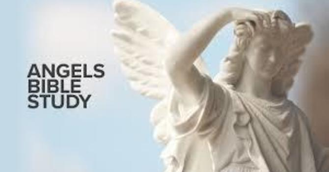 A Study on Angels! image