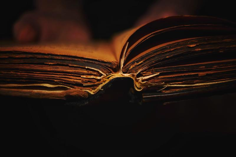 Left Behind #1.  Books that didn't make it into the Bible