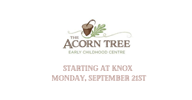 The Acorn Tree Early Childhood Learning Centre image