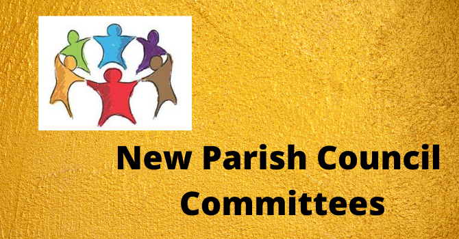 New Committees at St. Andrew