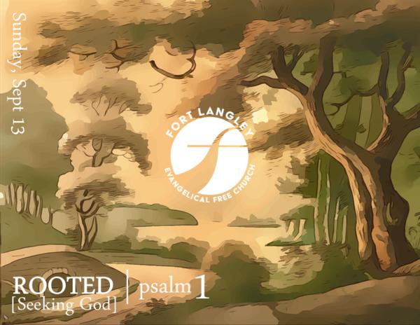 Rooted [Seeking God]