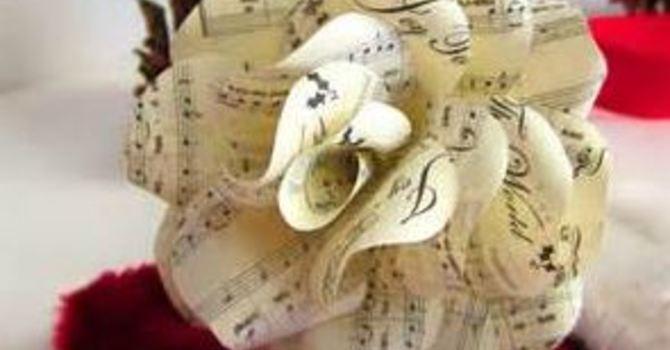 Cantata - Winter Rose image