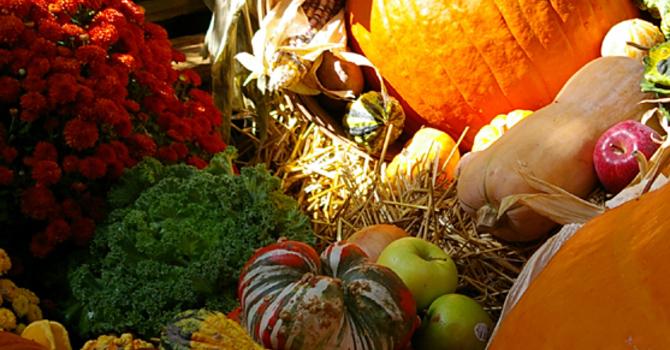 Grateful for Abundance Update image