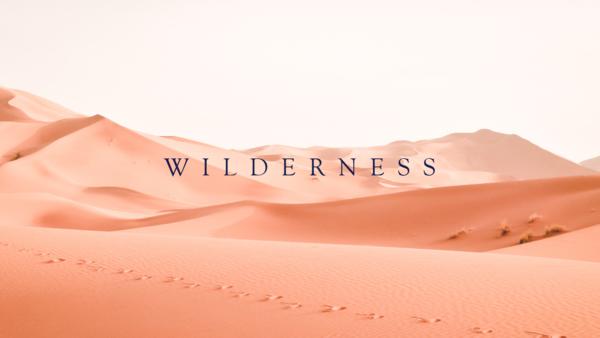 Wilderness | 2020