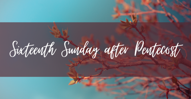 Sixteenth Sunday after Pentecost