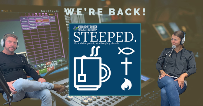 Steeped is back!