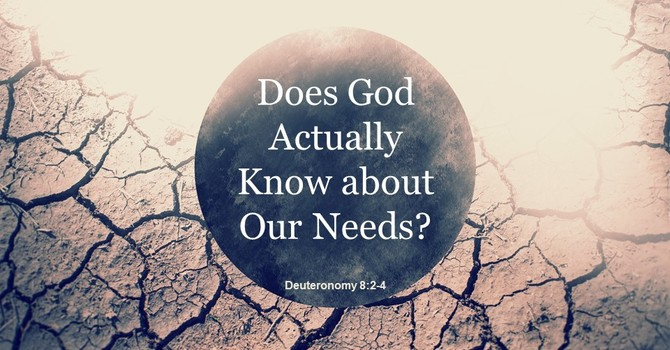 Does God Actually Know about Our Needs? image