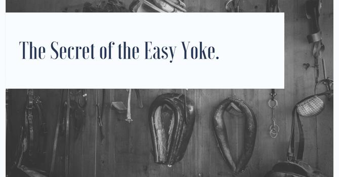 The Secret of the Easy Yoke