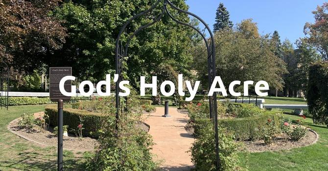 God's Holy Acre