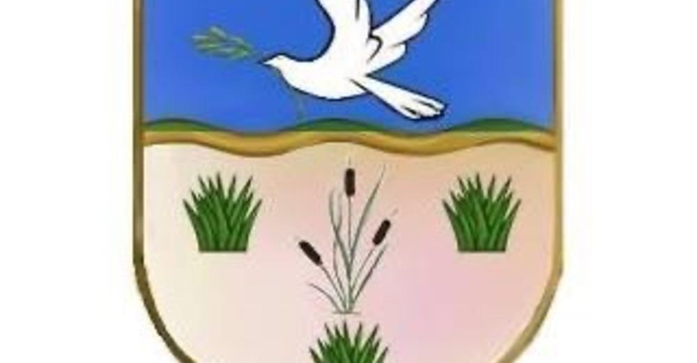 Diocesan Synod 2020
