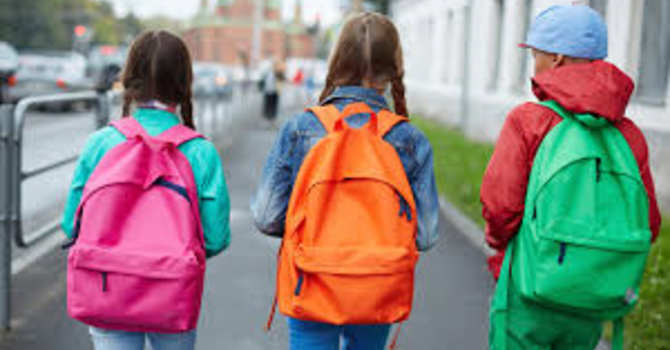 The 2020 Backpack project