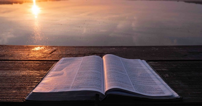 Daily Devotion | Psalm 119:25-32