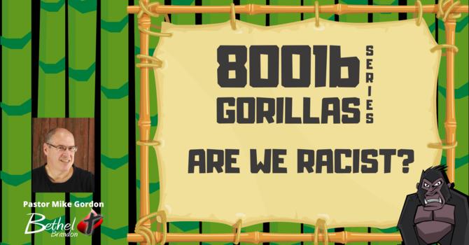 800 lb Gorilla