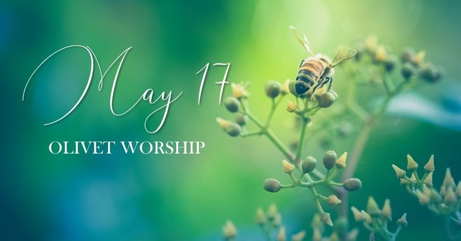 Sunday, May 17