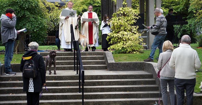 Blessing of the Animals at SJS image